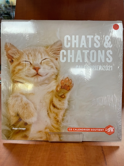 Calendrier mural Chats et chatons 2021
