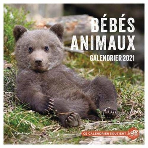 Calendrier mural Bébés animaux 2021